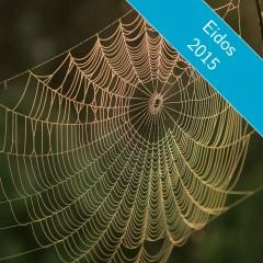 Retrouver intervenants et participants d'Eidos64 sur les réseaux