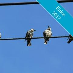 Retrouver les participants d'Eidos64